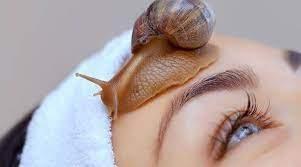 Mengenal Manfaat Snail Mucin, Kandungan Super di Produk Skincare Korea